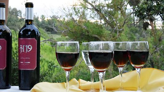 Un vino exclusivo para el mundo del golf, con marca villamariense