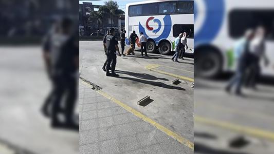 Operativo en la Terminal: Efectivos de la PFA controlaron vehículos con perros