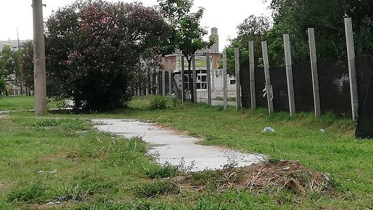 UCR se queja por la obra de parque Pereira: Dicen que atrasa y genera inseguridad