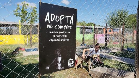 Jornada de adopción de mascotas en el Parque de la Vida