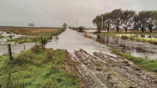 ¿Chau inundaciones? Harán obra hídrica en Los Zorros
