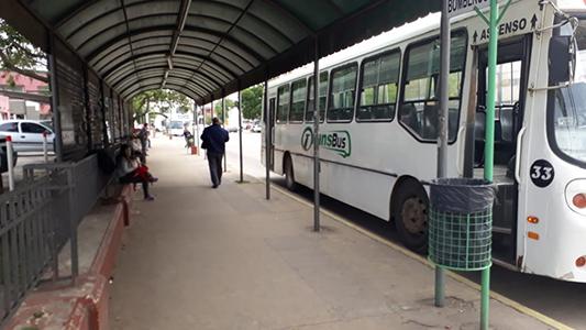 El servicio de transporte urbano funciona con total normalidad