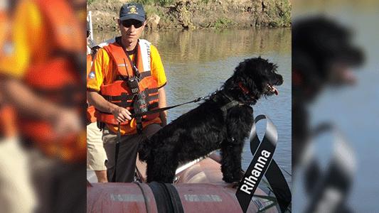 Murió Rihanna, la primera perra de rescate que tuvieron los bomberos de Villa María