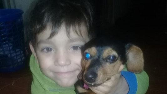 Final feliz: Fran y su perra Luna se reencontraron
