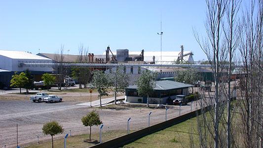 Por qué la cáscara de maní salvó a Ticino del corte de energía