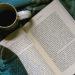 22 libros sugeridos por la Medioteca que se pueden llevar para leer en casa