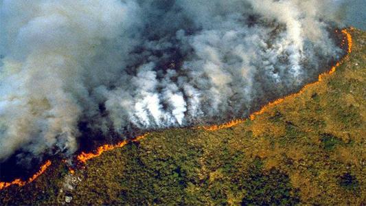 Incendio en el Amazonas: Bomberos en alerta amarilla para ir a colaborar