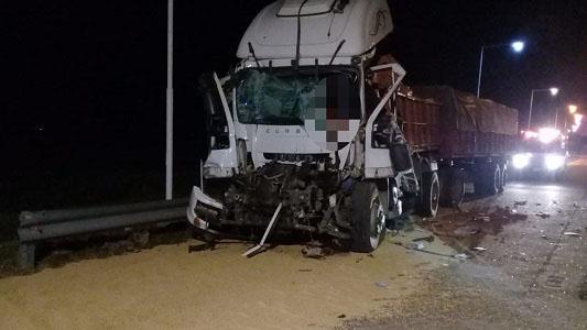 Choque fatal en Autopista: Murió camionero cerca de Leones